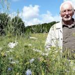 Joachim Wadsack Wildpflanzen