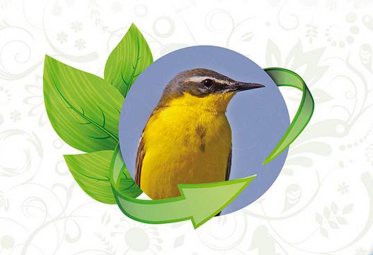 Greening für Artenschutz