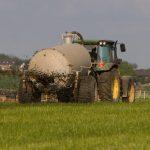 Stickstofffixierung durch Wildpflanzen - Gewässerschutz