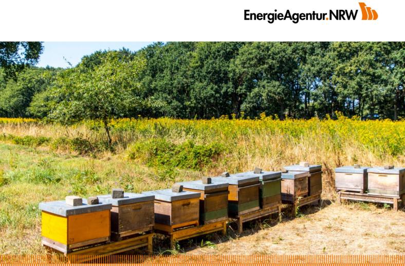 Wildpflanzen als Substrat Biogasanlagen