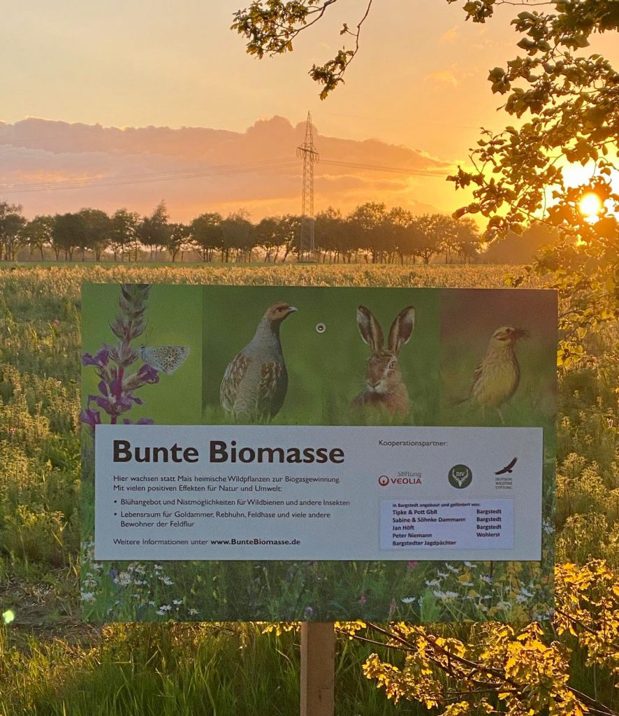 Bunte Biomasse in Bargstedt