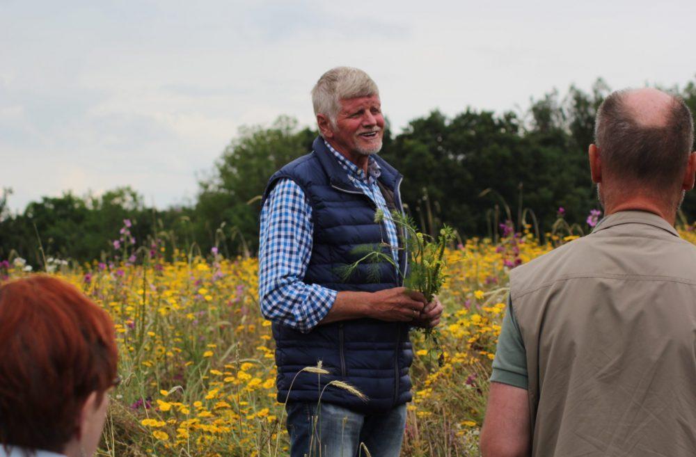 Johann Högemann auf Wildpflanzenfeld zur Biomasseproduktion