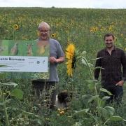 Bunte Biomasse blüht in Hessen