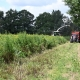 Bunte Biomasse vor Ort erleben