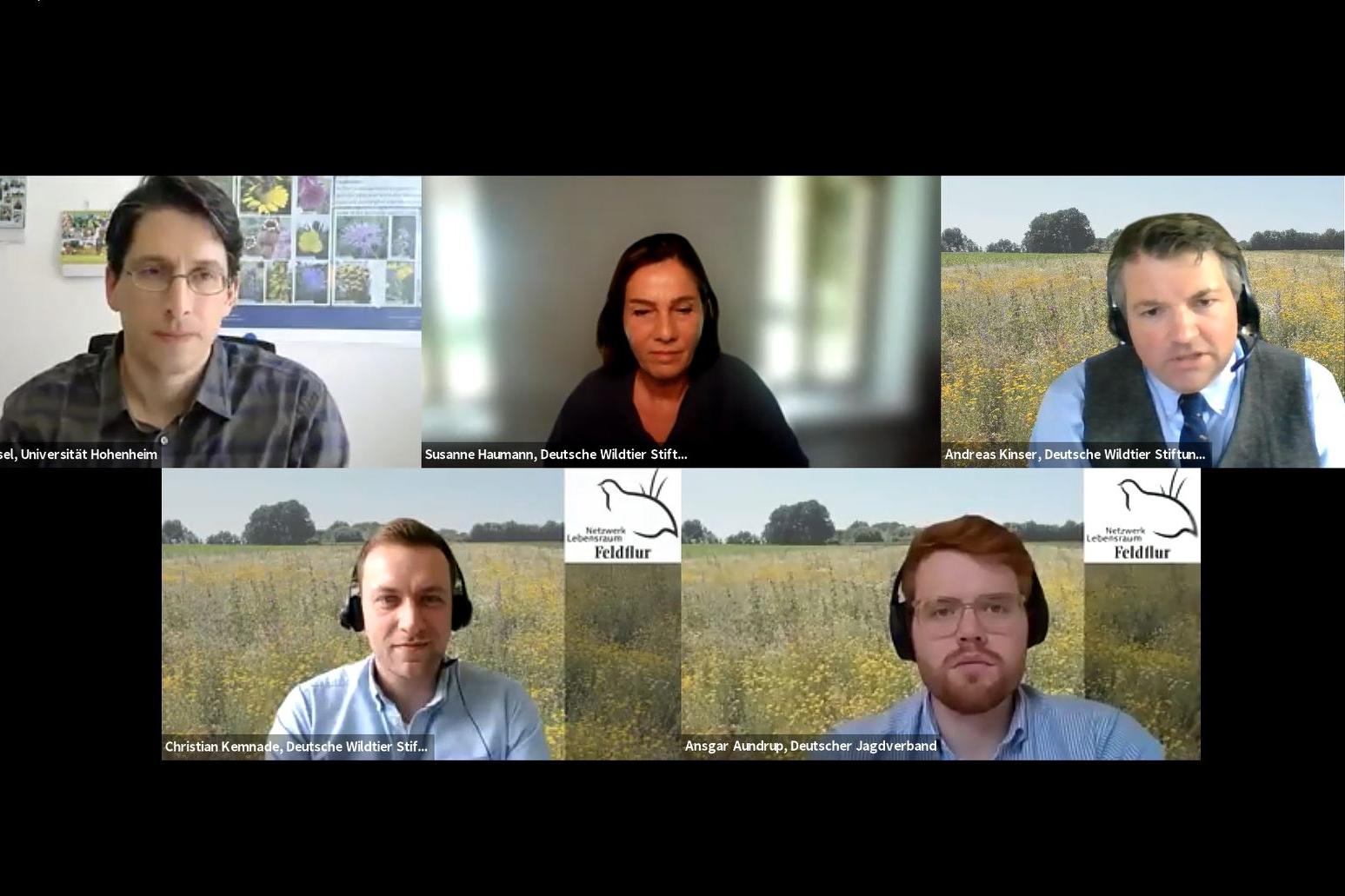 Onlinetagung Mehrjährige Wildpflanzenkulturen Netzwerk Lebensraum Feldflur